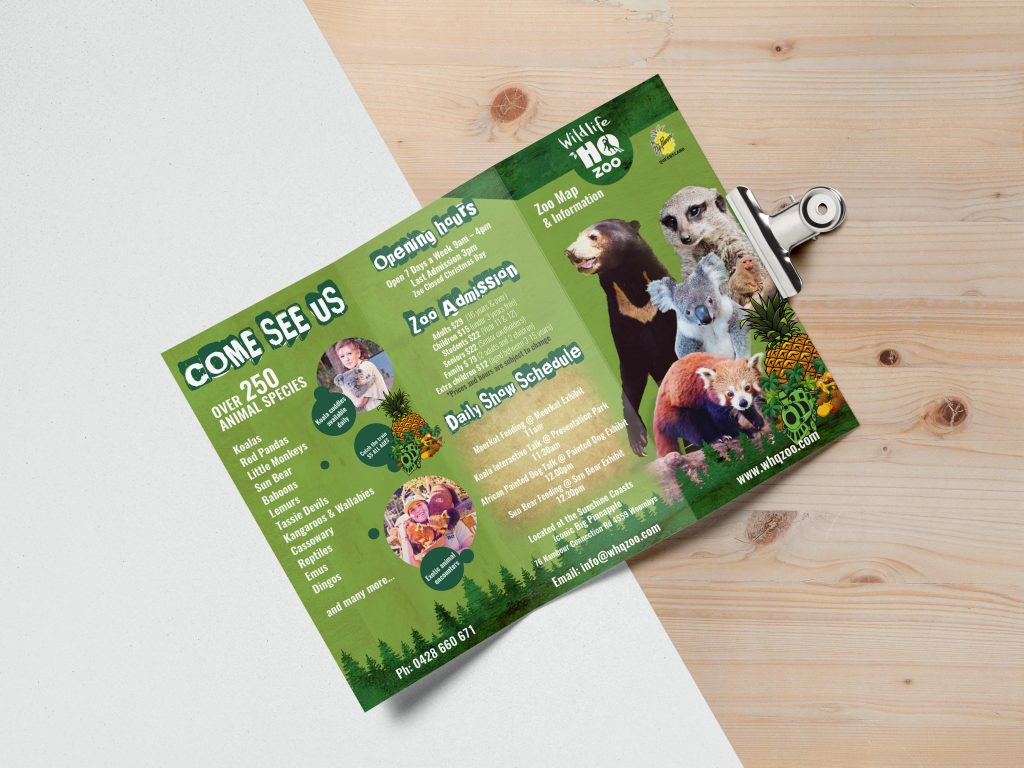 dl brochure printing  a4 brochure printing  brochure design